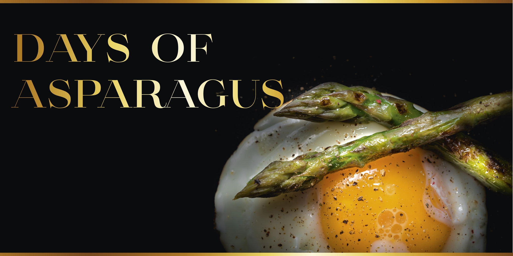 Asparagus – wild green messengers of springtime at Le Bistro