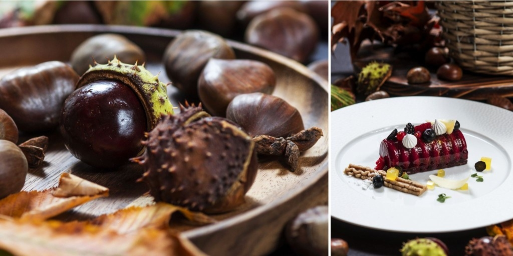 The Smell of Autumn (and Chestnuts) Is in the Air
