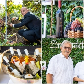 Grape harvest in the small vineyard of the iconic Oleander Terrace, along with a tasting of the first exclusive bottles of Zinfandel 2019  with the Esplanade Hotel label and Krauthaker Winery signature